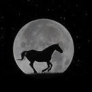 Mondpferd, das in nächtlichen Himmel mit großem Vollmond läuft von Stephanie Laird