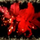 Wonderful Red Lilies With Gold Snow And Stars by hurmerinta