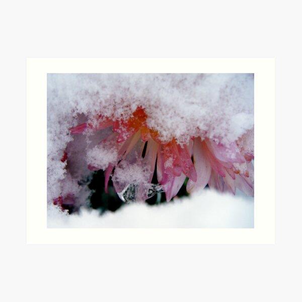 Deep Self Care: The Winter's Gift Art Print