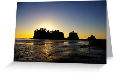 sun setting behind james island, washington, usa by dedmanshootn