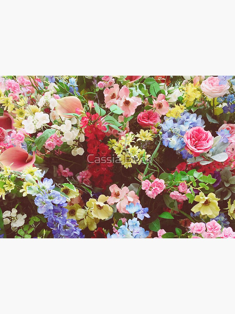 Floral Explosion by Cassia
