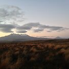 Ruapehu at sunset by zijing