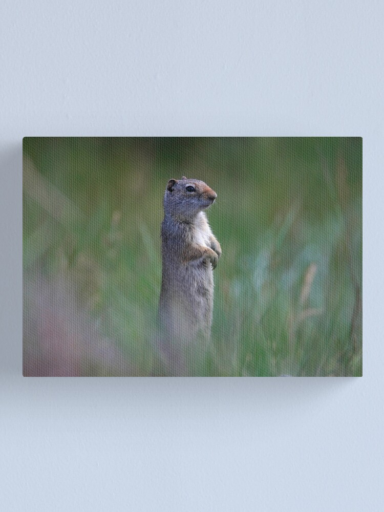 Alternate view of On Guard Canvas Print