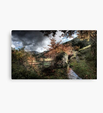 The Fence and the Stream Canvas Print