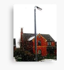 A touch of frost Canvas Print
