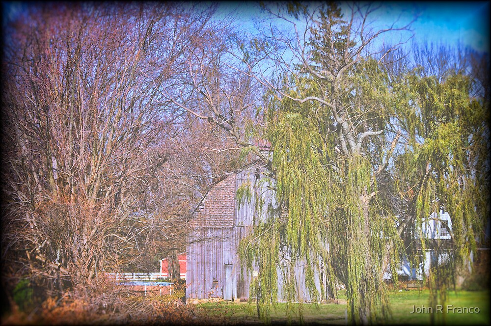Old Barn with Willow Tree by John R Franco