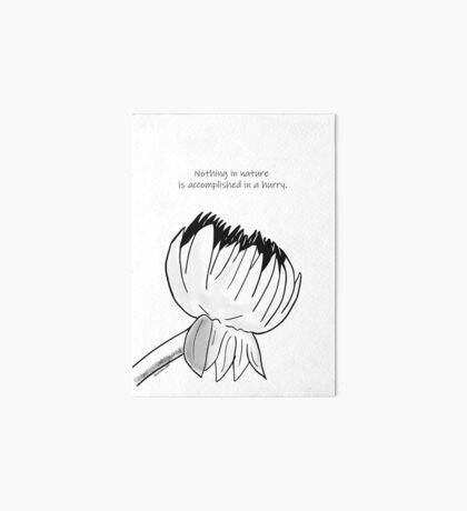 Nothing In Nature Is Accomplised In A Hurry Art Board Print