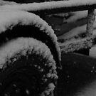 Winterized by Dan Casey Campbell