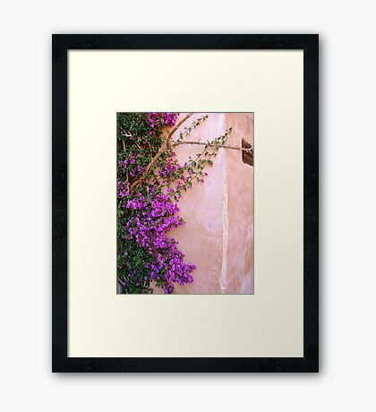 Climbing up the walls... Framed Print