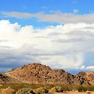 Foothills, Sawtooth Canyon, CA by rmenaker