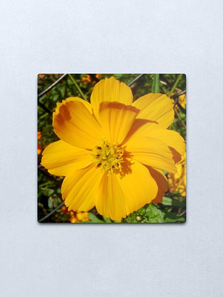 Alternate view of Unrestricted Flower Metal Print
