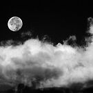 The Moon Is A Harsh Mistress by Gregory J Summers