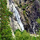 """""""Cascade Falls"""" by Lynn Bawden"""