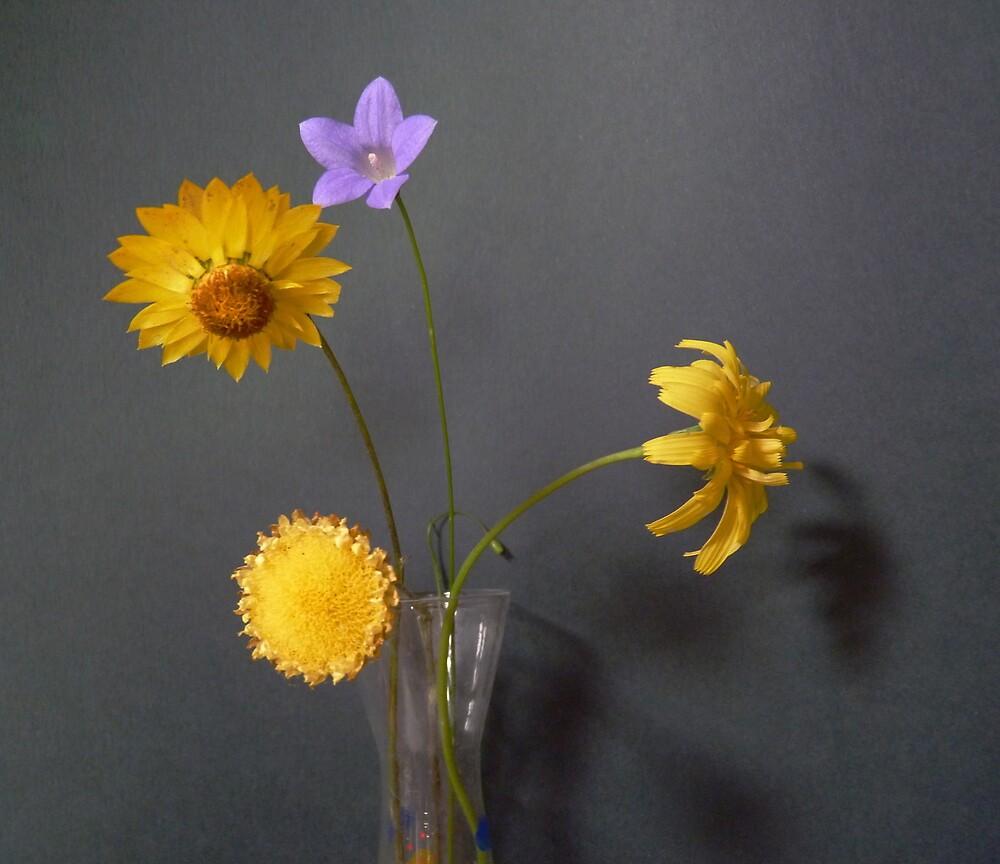 Indoor Sunshine...Wildflowers by Meg Hart