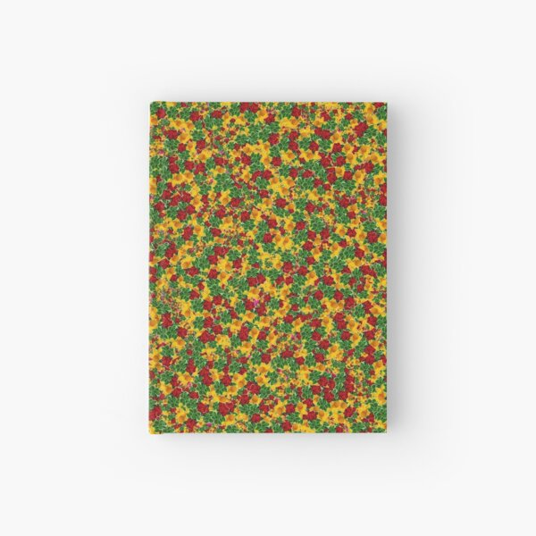 England Ireland and Wales pattern Hardcover Journal