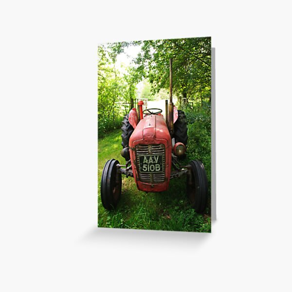 Old Fergie in the shade Greeting Card