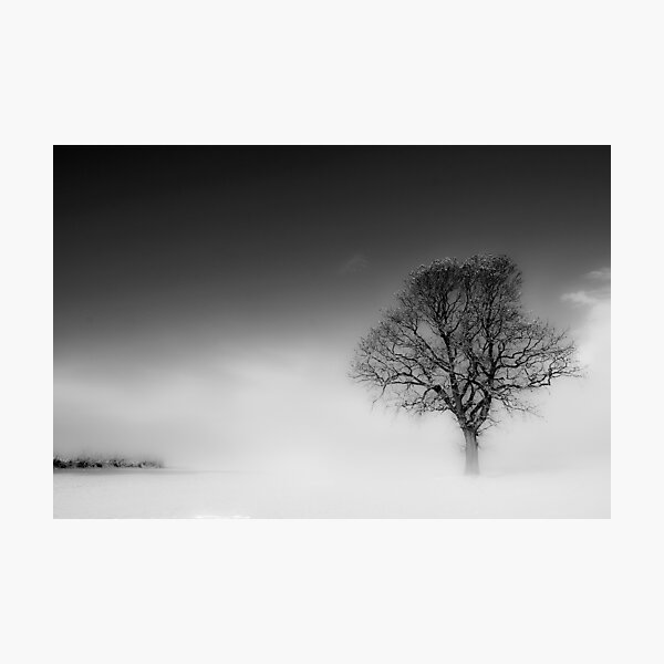 Dreaming of a distant shore Photographic Print