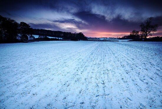 Winter's Eye by Andy Freer