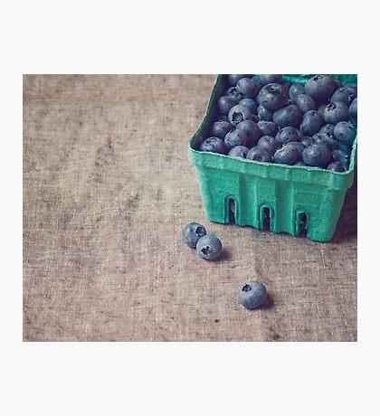 Summer Blueberries Photographic Print