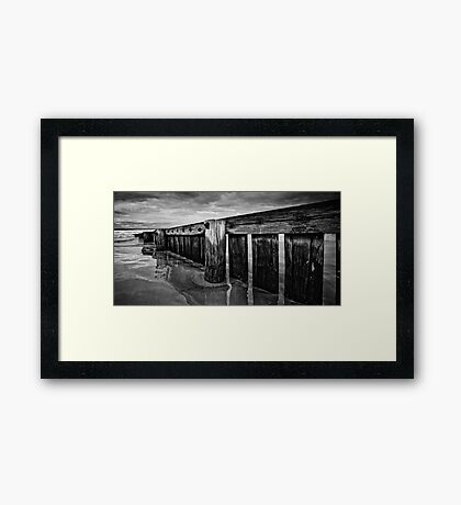 Old Timber B/W Panorama Framed Print