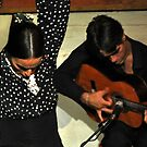 Flamenco in Barcelona by milton ginos