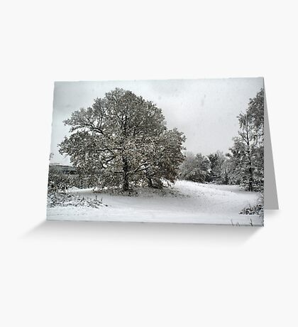 Snow Storm 2 Greeting Card