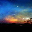 Aurora Borealis © by Dawn Becker