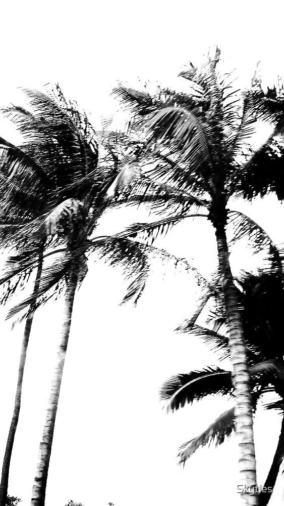 Hawaii Highway  by Skytles