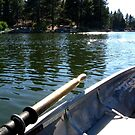 Floatin' on Green Valley Lake by Jennifer  Gaillard