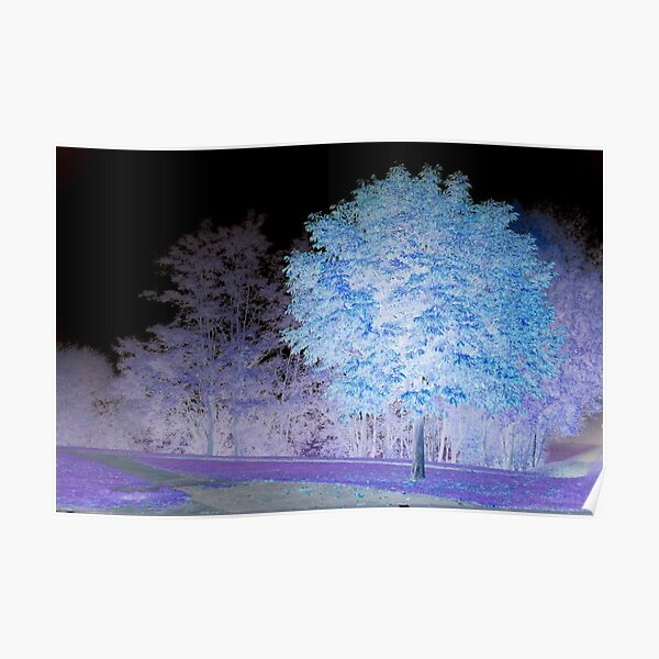 Inverted chestnut in blue-purple Poster