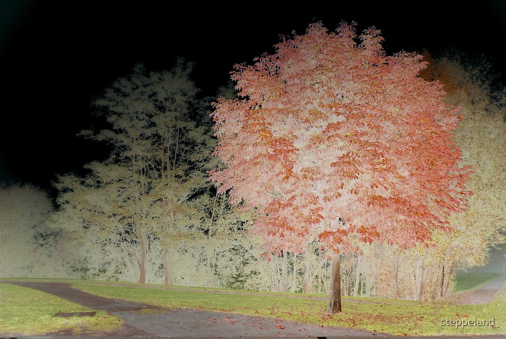 Inverted chestnut in red-green by steppeland