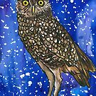 An Owl for Nick by Alexandra Felgate