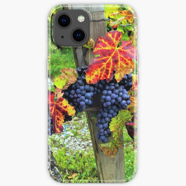 Colorful grapes and vines from the French Alps iPhone Soft Case