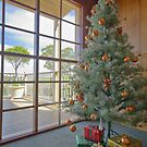Yileena Park Christmas by Di Jenkins