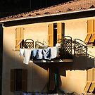 Laundry Drying in the Sun by Kent Nickell