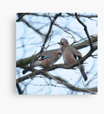 Too Cold To Fly Away Canvas Print