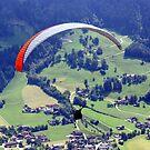 The Paraglider by Bertspix1
