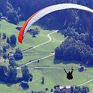 Still Gliding by Bertspix1