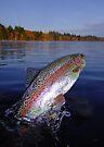 Adirondack Autumn by Brian Pelkey