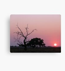 Riverina Sunrise - Wogollow Farm, Benerembah Canvas Print