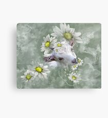 Don't Eat the Daisies Baby Goat Metal Print