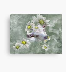 Don't Eat the Daisies Baby Goat Canvas Print