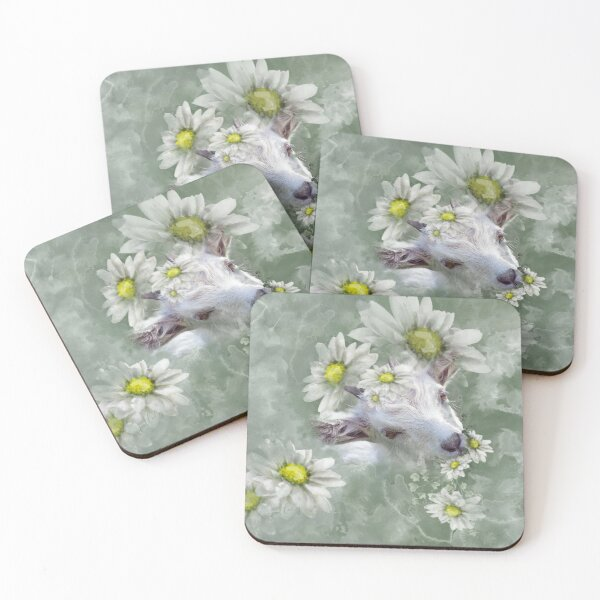 Don't Eat the Daisies Baby Goat Coasters (Set of 4)