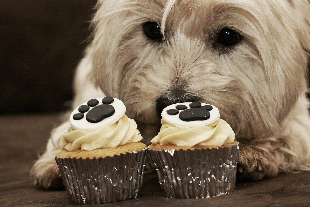 aaa cupcake 8 by adellecousins