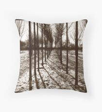 Lines in the Landscape Throw Pillow