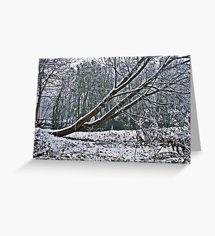 The Coldest Winter #4 Greeting Card