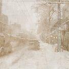 2008 or 2009 Snow Storm by miadefleur
