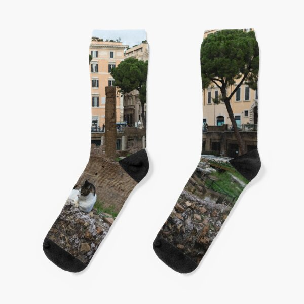 Oh So Rome - Cats, Umbrella Pines and Ancient Ruins Socks