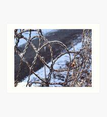 Wire Art Print
