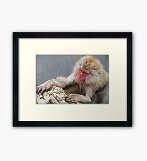 Monkey Onsen Framed Print